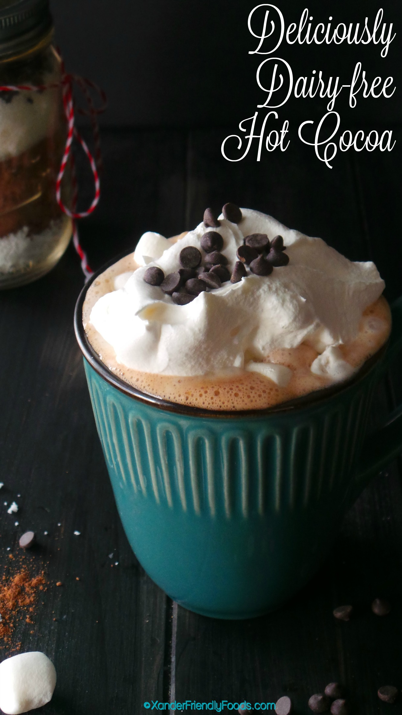 Deliciously dairy free hot cocoa mix for 1 or 10! Perfect treat for all your Top 8 free guests