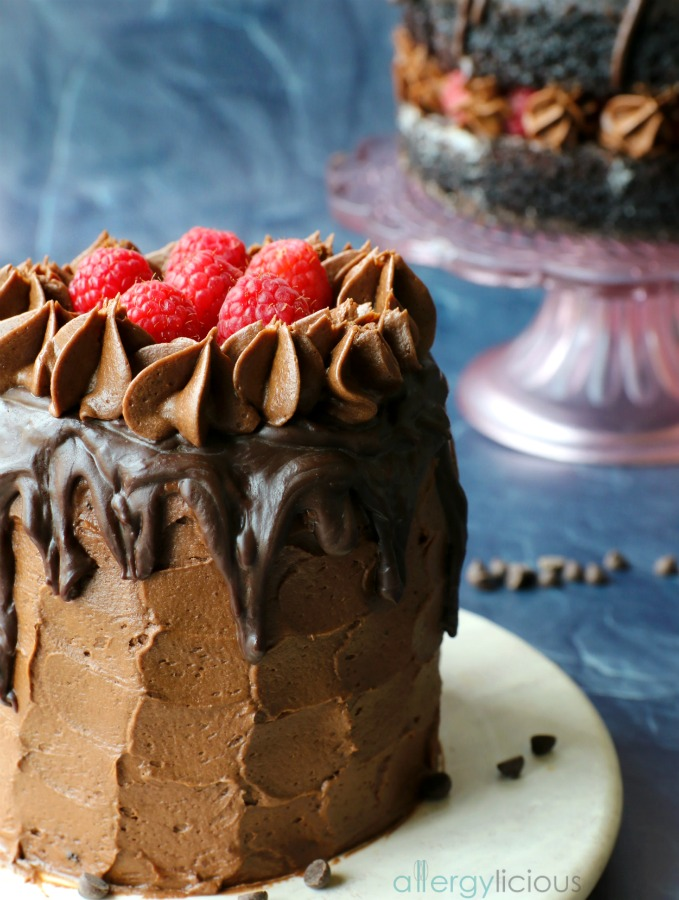 close up of mini chocolate raspberry cake