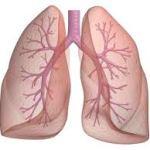 New Asthma Medications