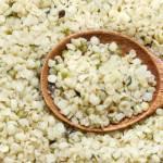 hemp seed allergy