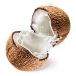 coconut allergy