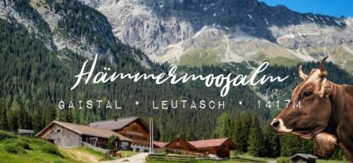 Hämmermoosalm Gaistal Leutasch