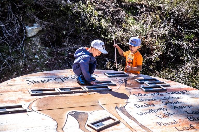 Wildtierpfad Zillertal – Ein interessanter Lehrpfad