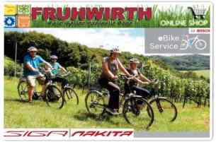 Fruhwirth e bike service