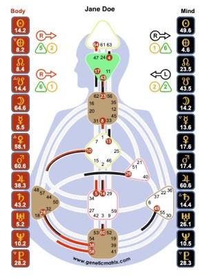 voorbeeld chart