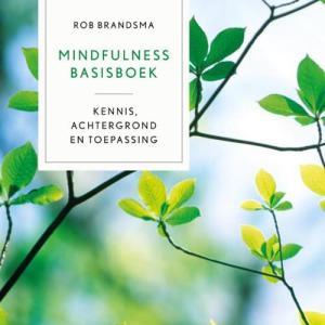 Mindfulness basisboek - Rob Brandsma - Hardcover (9789401400497)