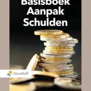 Basisboek aanpak schulden - Nadja Jungmann, Tamara Madern - Paperback (9789001738921)