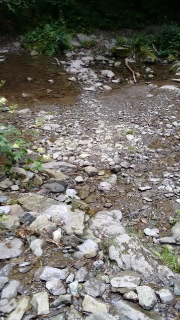 Wandeling le tour de Bayehon -Pouhon-Vallee de la Warche.