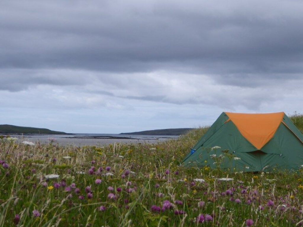 Eureca tent between the wild flowers on Pabay, Barra head iles