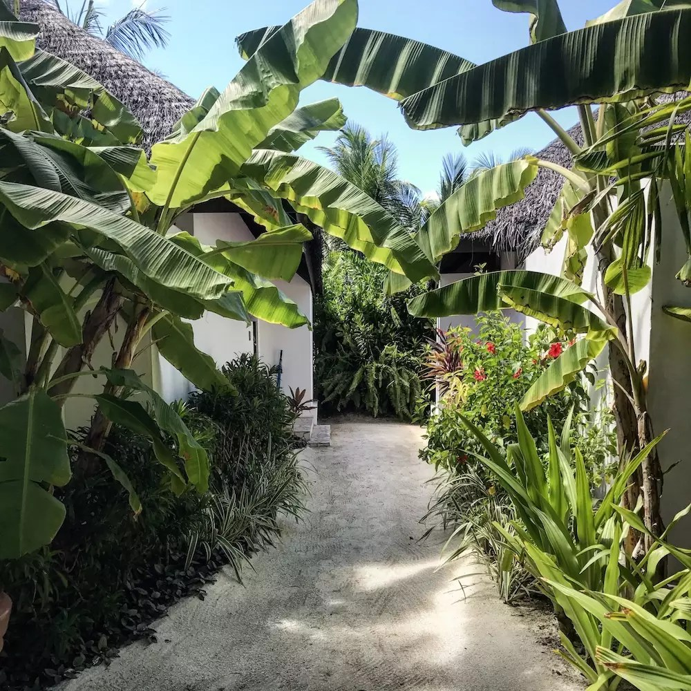 maldives-velassaru-alley-girl-fashion-travel-life-style-blog