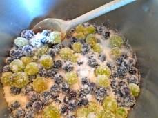 blueberries, gooseberries & sugar