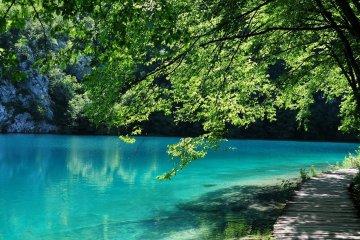 jezioro Plitvickie w Chorwacji, niebieska woda, zielone drzewo