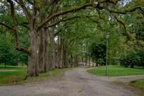 Olustvere mõisa park