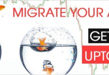 Migrate forex account offer