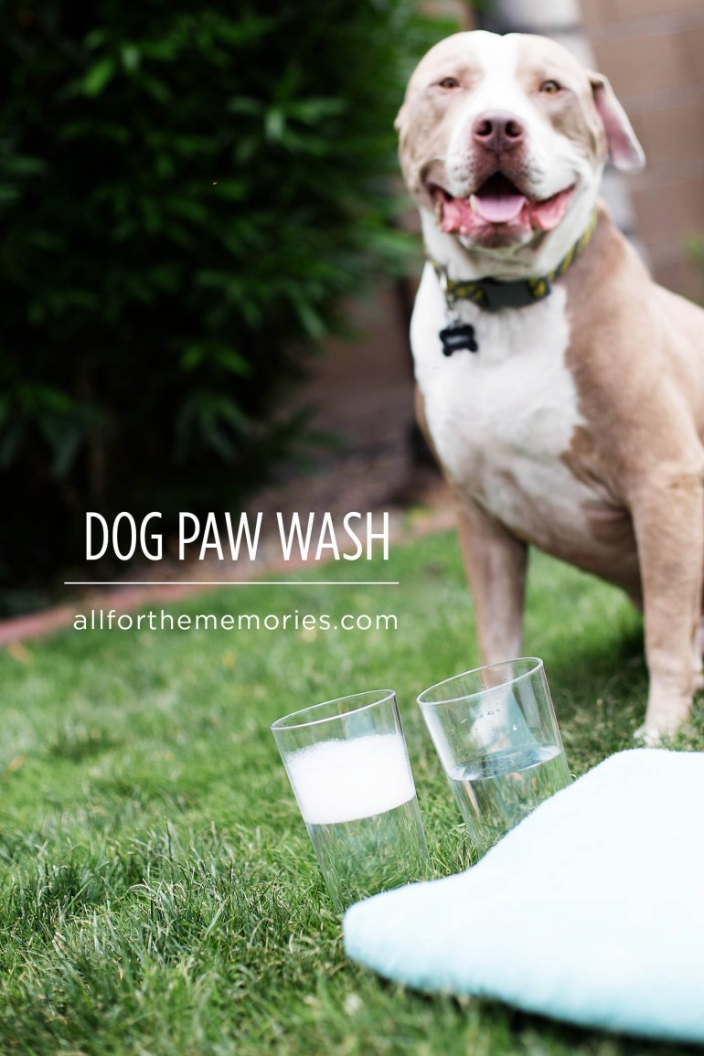Keeping the house clean in summer with kids + dogs. Love the dog paw wash! Would be great for camping or rving too!