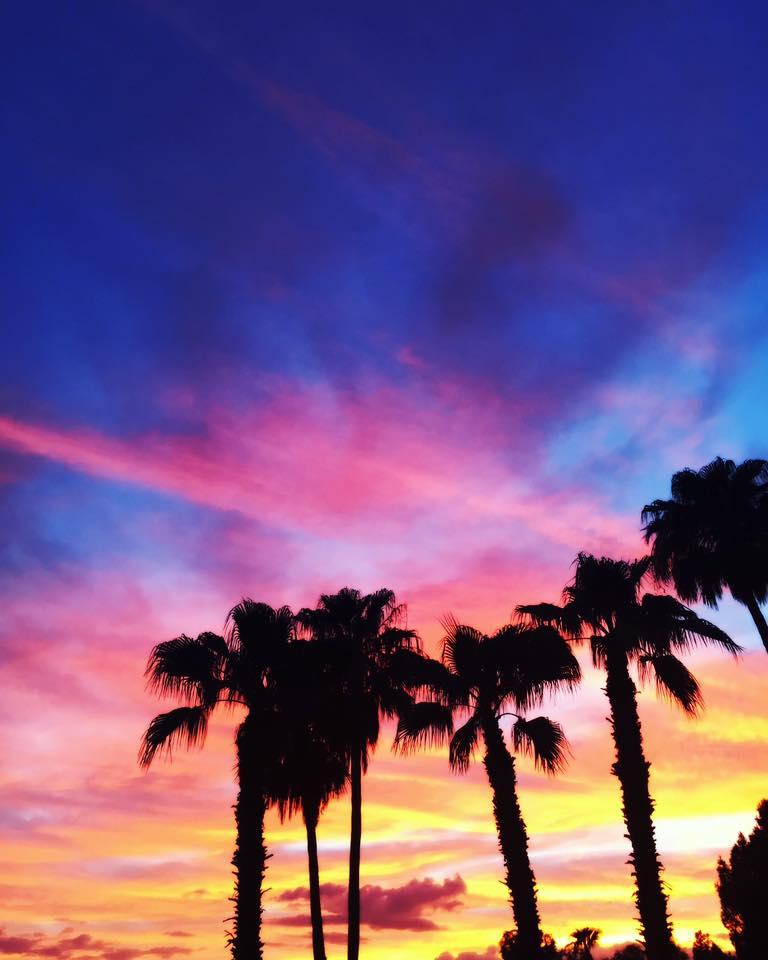 Top 5 favorite things to do in Phoenix + Crabbie's Week!