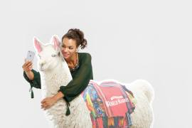 National Llama Day events at Cost Plus World Market