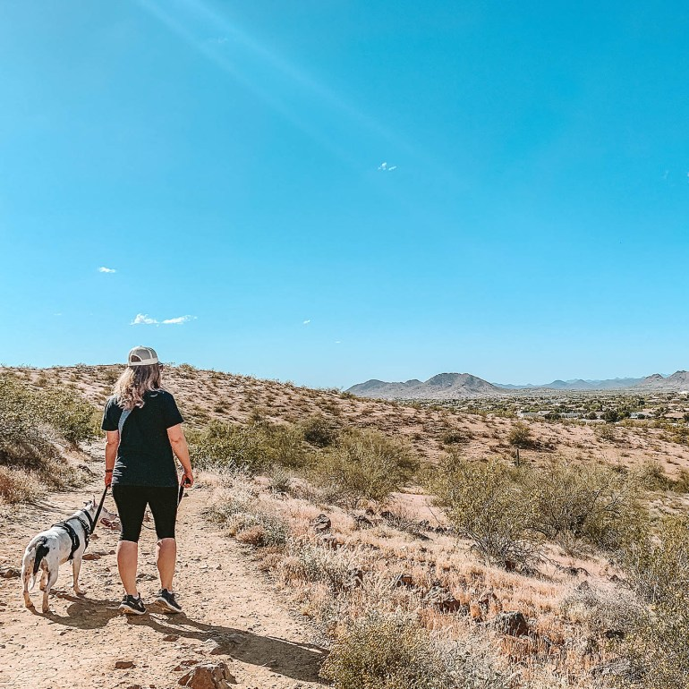 Favorite things to do with the dogs in and around Phoenix, AZ