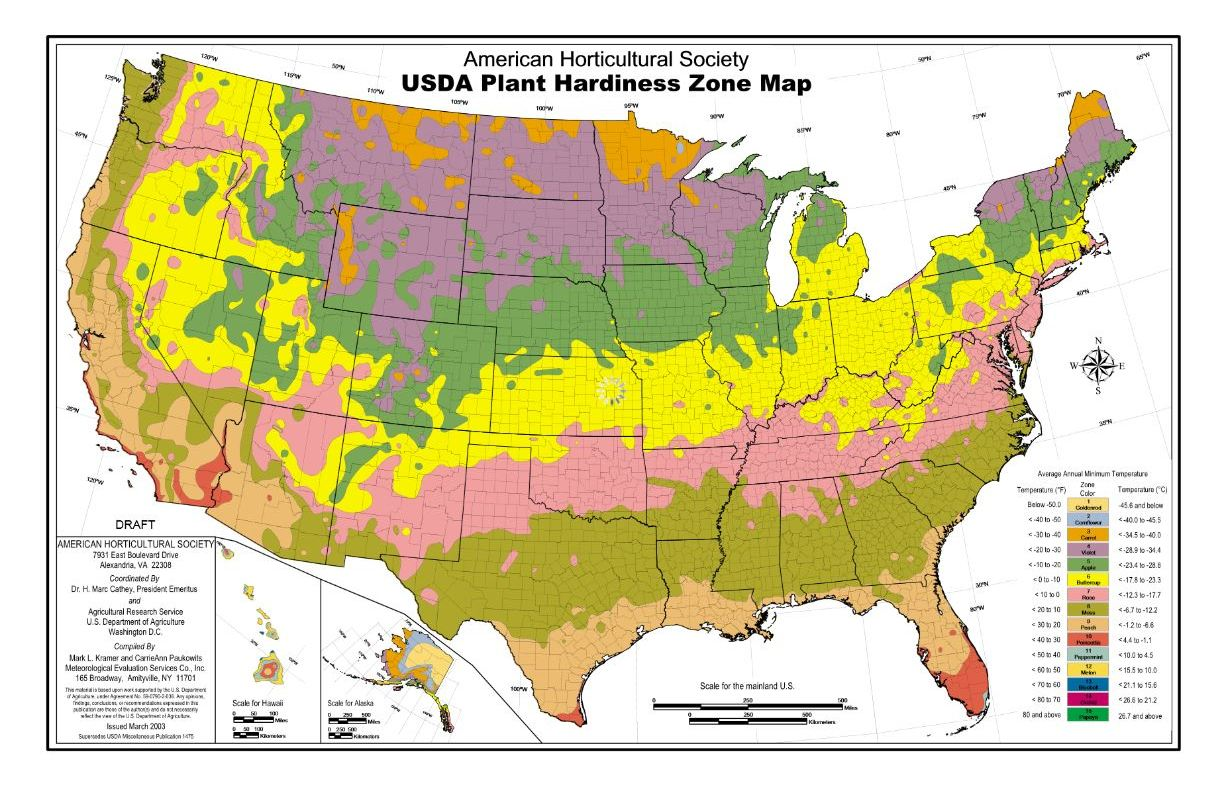 USDA Hardiness Zone Finder Gardenorg Comparing US And Canadian - Us weather zones map