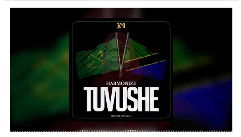 Audio   Harmonize – Tuvushe   Download