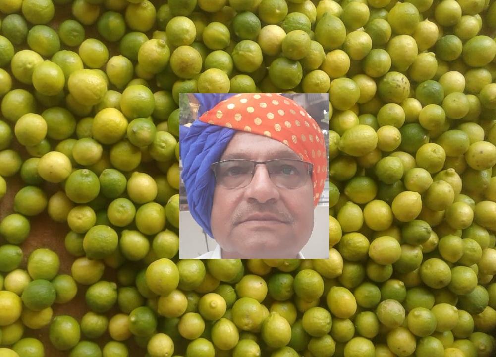 RASHIK BHADANIYA