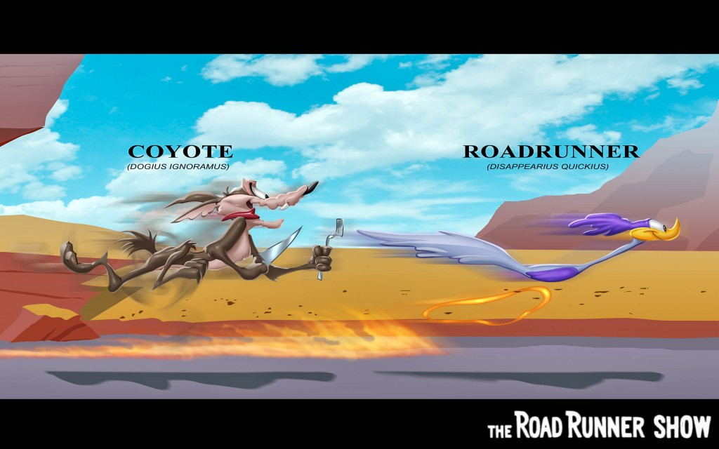 Road Runner High Resolution HD Wallpapers All HD Wallpapers
