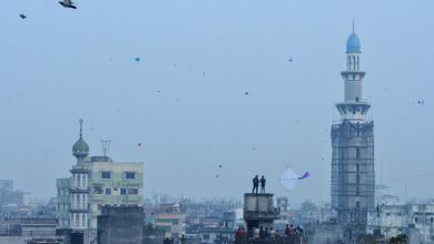 Happy Shakrain Festival