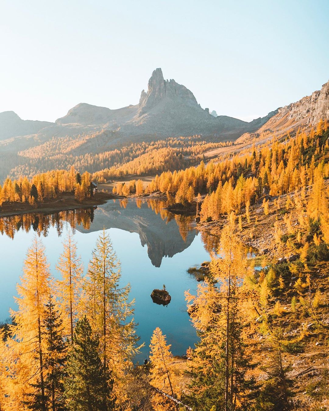 fall larches in the dolomites italy
