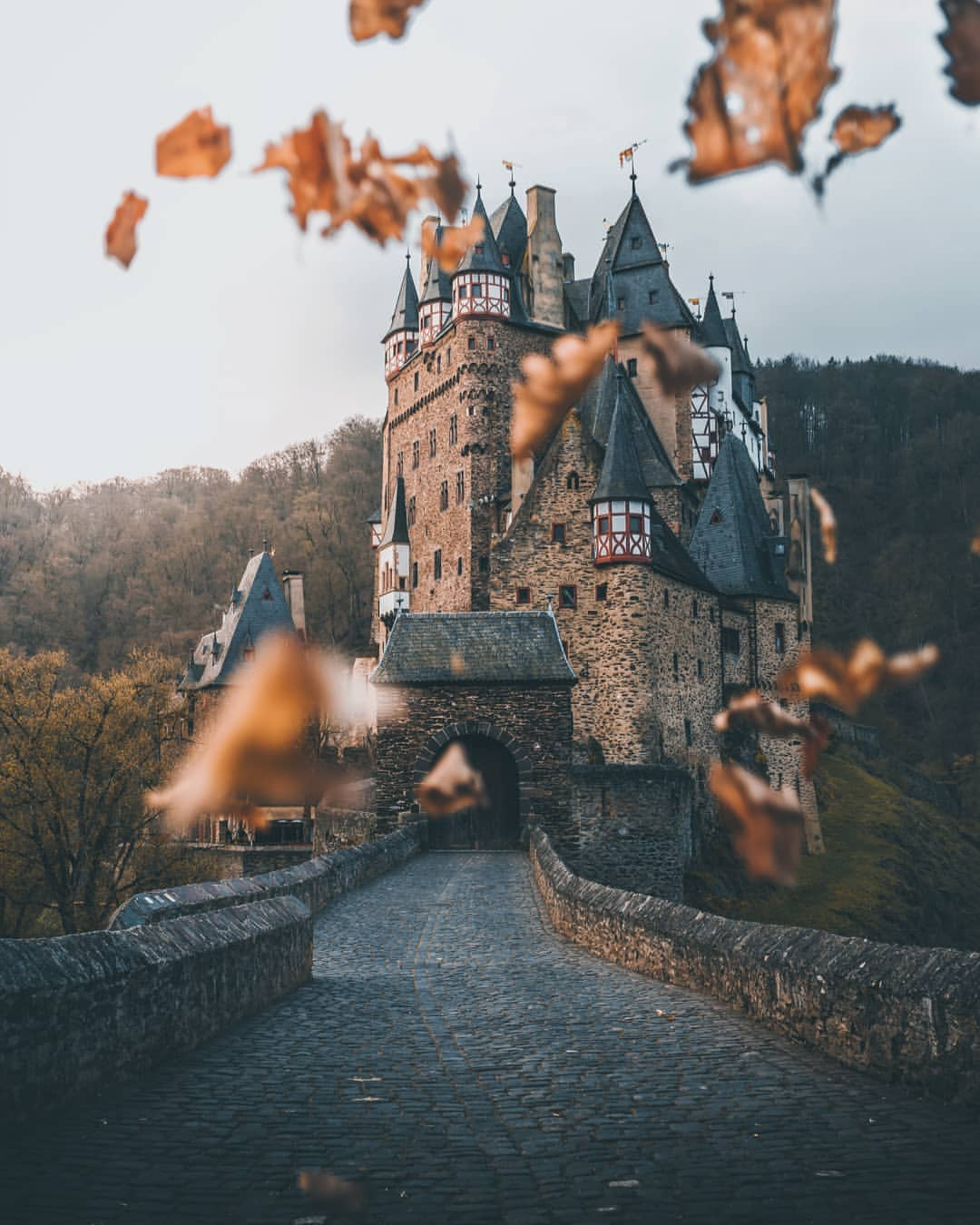 Fall leaves in front of Eltz Castle, Germany