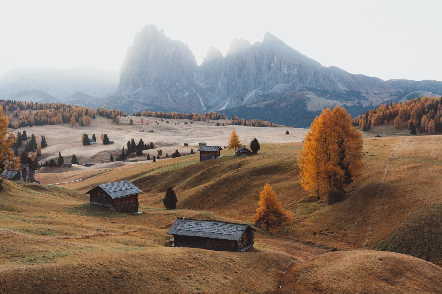 Alpe di Suisi in the fall at sunrise
