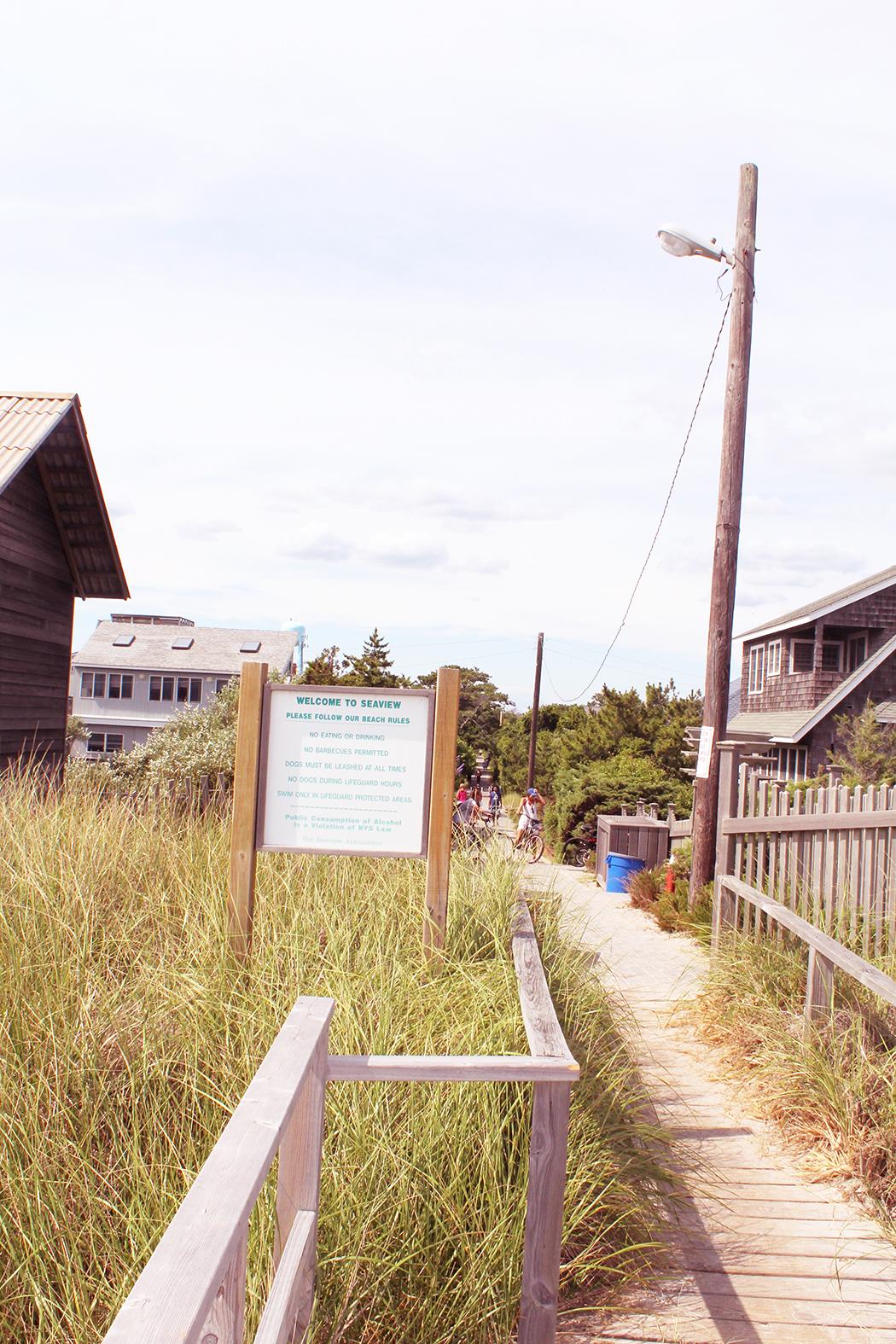 Fire-Island-Grass
