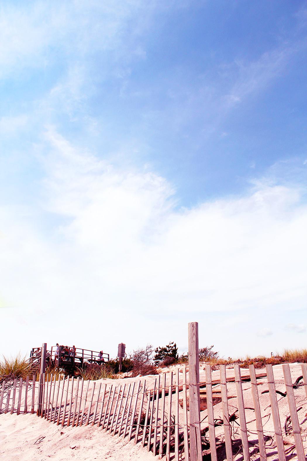 Fire-Island-fence2
