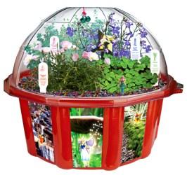 fairy-dome