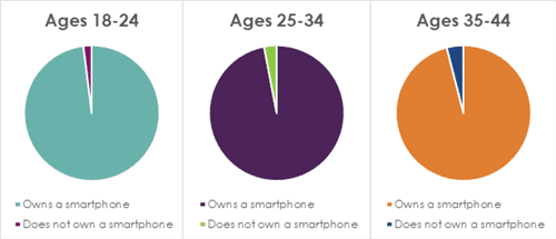 Pie chart on mobile usage