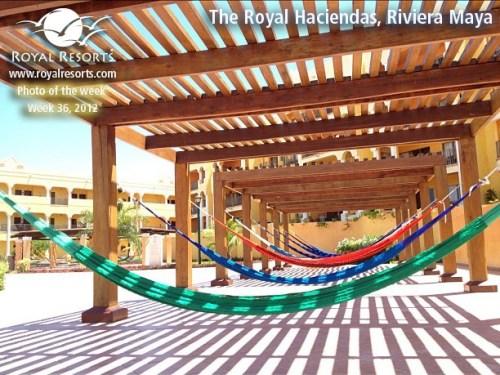 The Royal Haciendas hammock section
