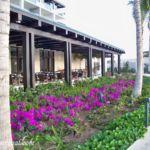 Dreams Playa Mujeres Maris restaurant outdoor seating
