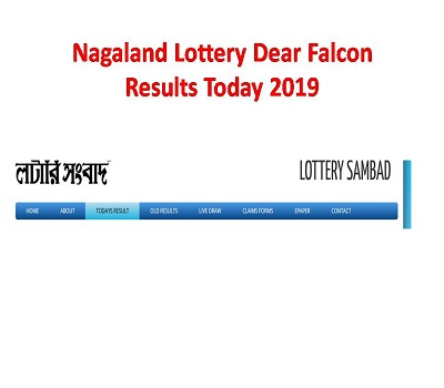 Nagaland State Lottery Result Pdf