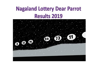 Nagaland Lottery Dear Parrot Results 6th August 2019 @ 8 00 PM