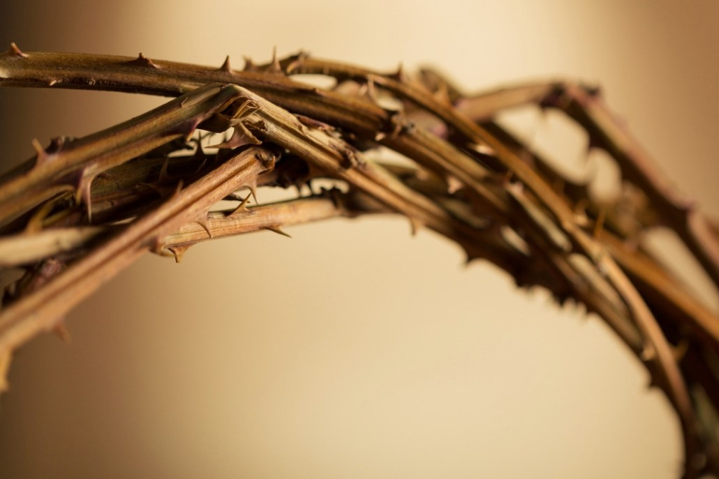 What Does Palm Sunday Mean To You? | allinmin.org