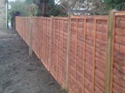 fencing29