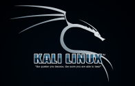 Kali Linux Complete Training Program from Scratch Video Tutorial Free Download