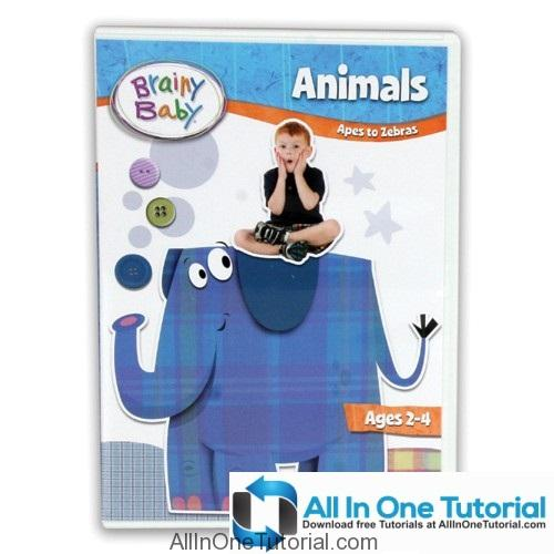 brainy_baby_animals_dvd_s_500_2_1_allinonetutorial-com