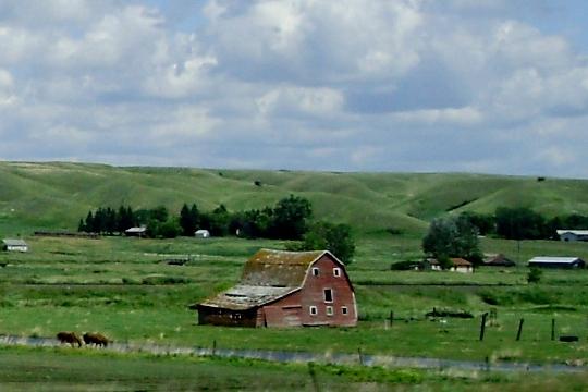 Old Barns (6/6)