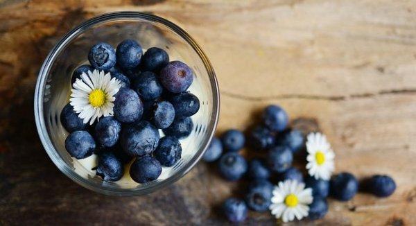 blueberries-2278921__340