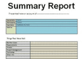 summary report reduced