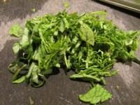 Chiffonade of basil and mint.