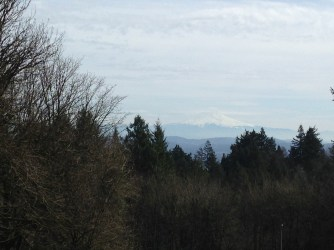 Even on cloudy days, Mt. Hood is impressive.