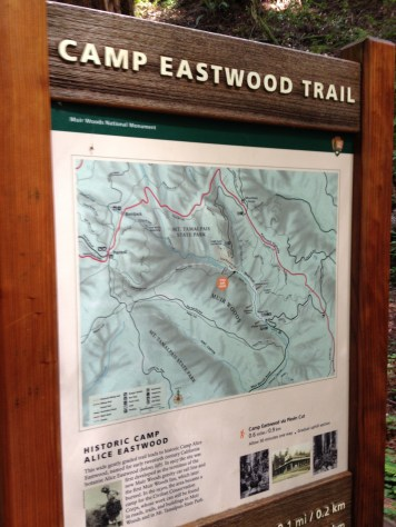 Camp Eastwood Trail