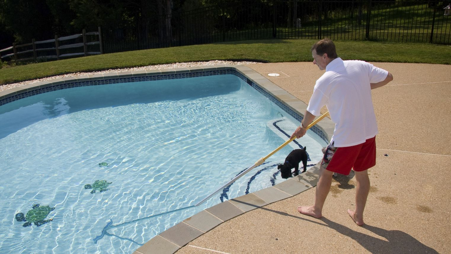 Professional Pool Cleaning Services In Visalia Ca 93292