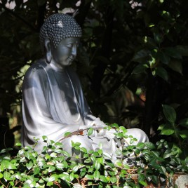 BUDDHA silently contemplating the beauty around him at Amrit Yoga Institute. Salt Springs, FL